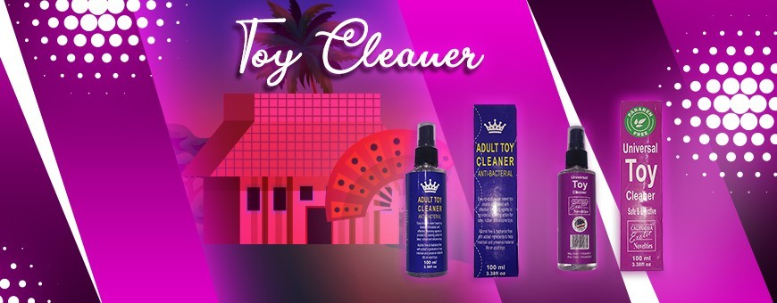Buy Universal Anti-Bacterial Toy Cleaner in Hanoi